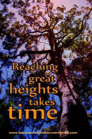 reaching great heights takes time