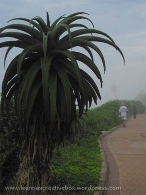Umhlanga boardwalk