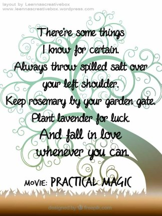 Practical Magic love