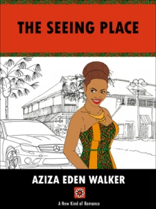 Book cover for The Seeing Place by Aziza Eden Walker