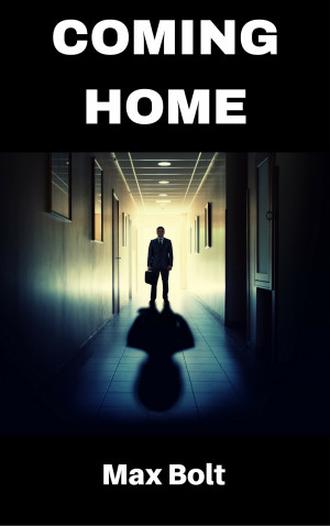Book cover Max Bolt Coming Home