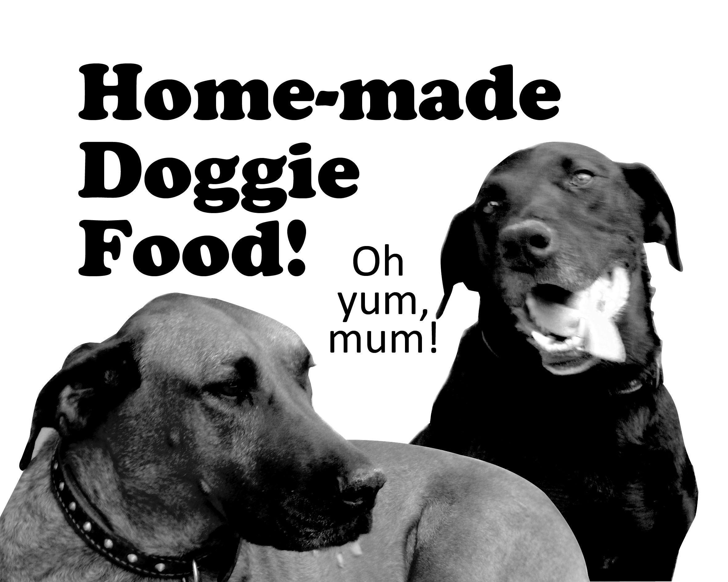 Yummy Home-made Food For Doggies