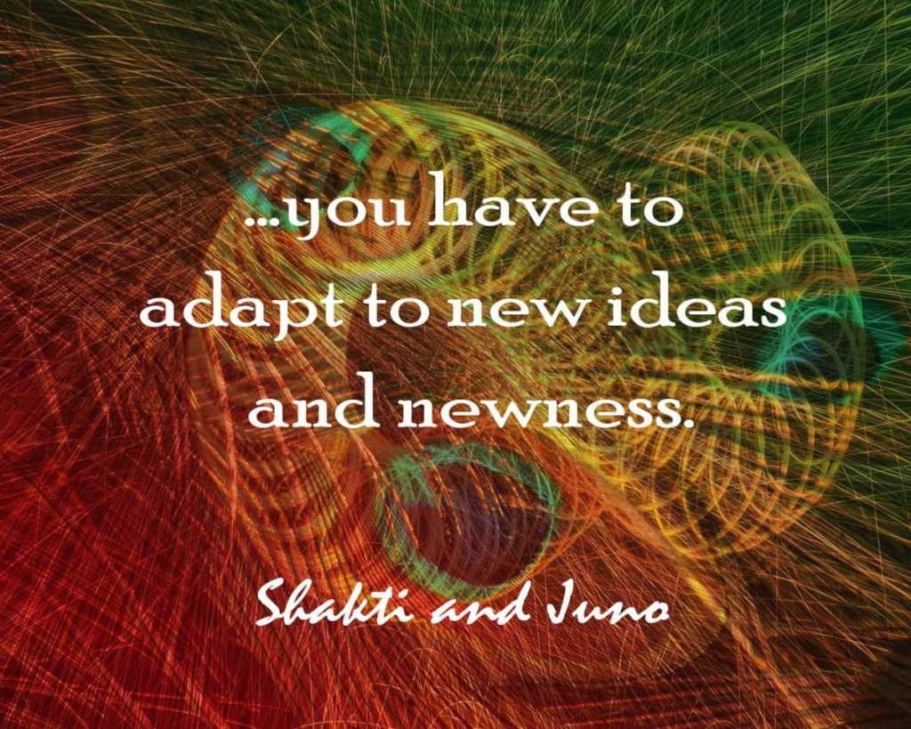 Quote love adapt to newness